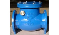 英标止回阀 BS5153SWING CHECK VALVE